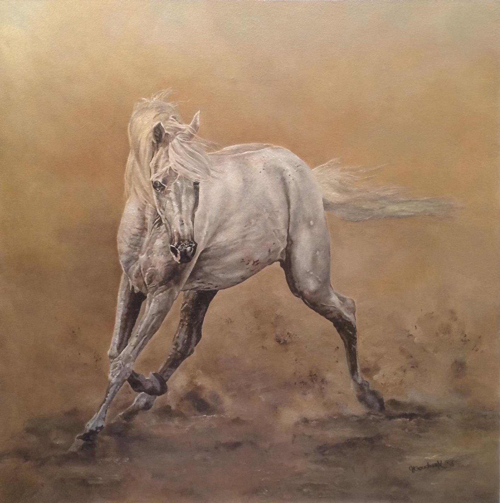 'The Arabian Horse'