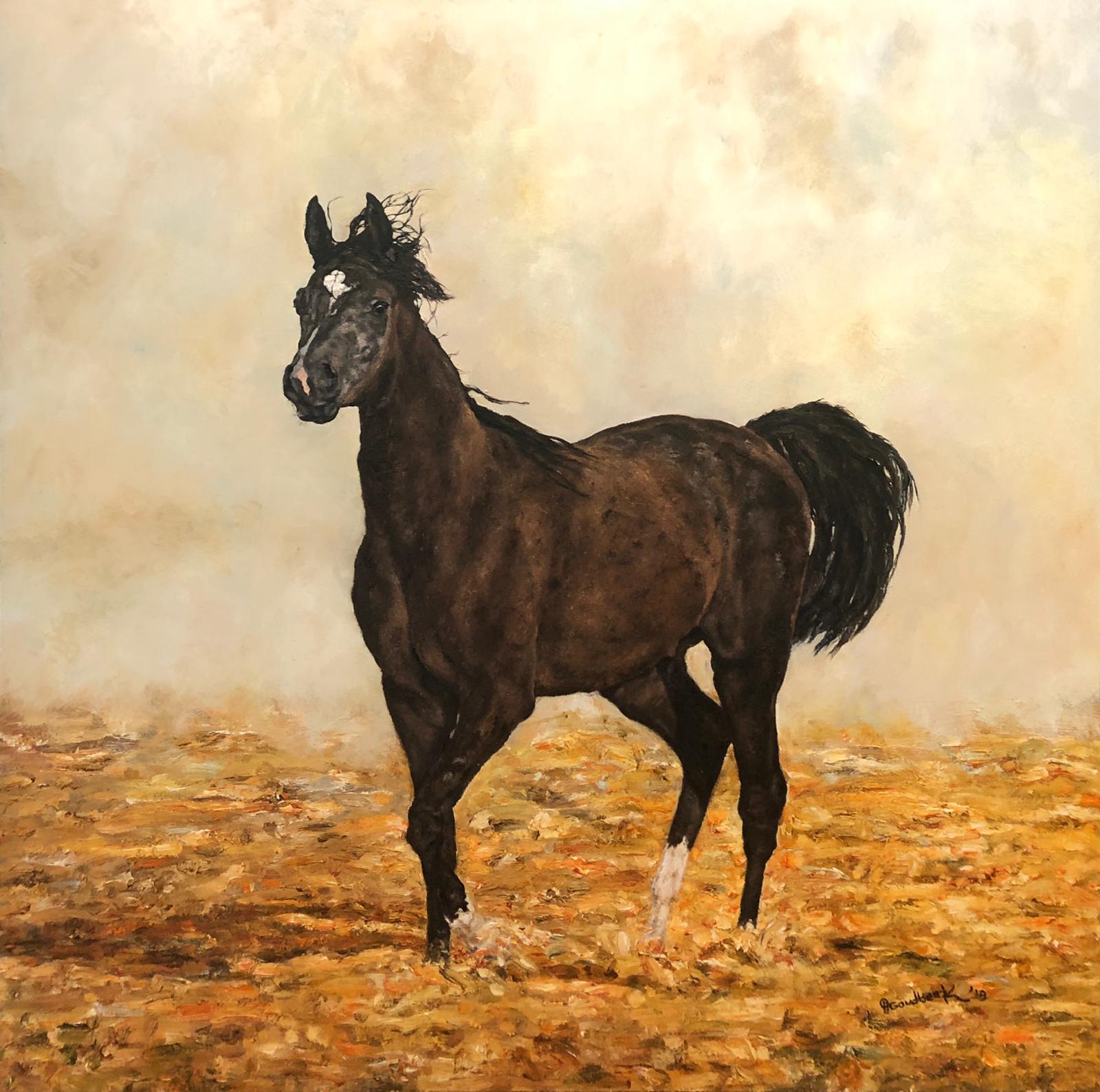 'Pure-bred Bahraini Arabian Horse' The Royal Arabian studs facility, Al Jazayer