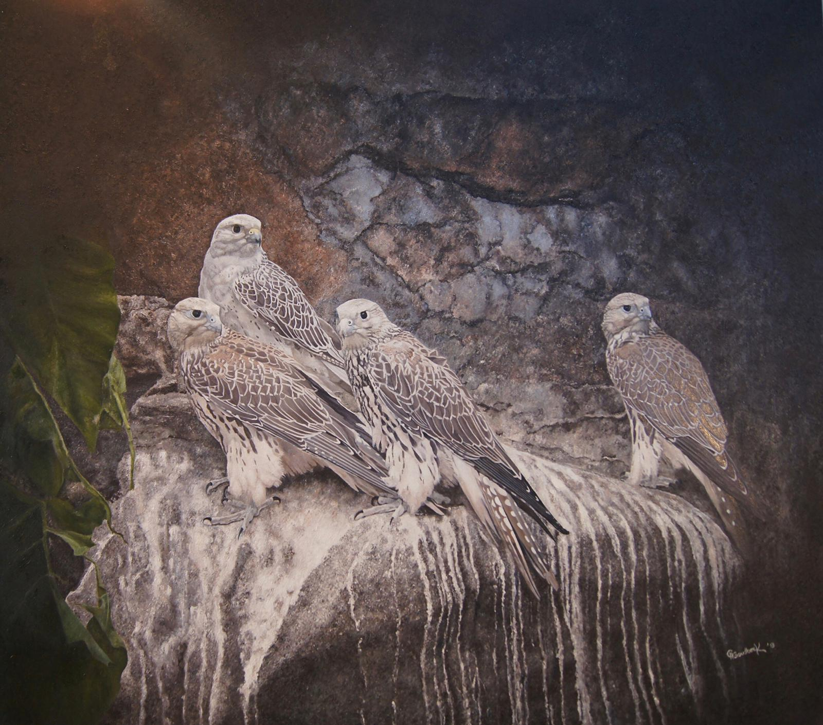 'Saker Falcons on a rock' (with dirt)