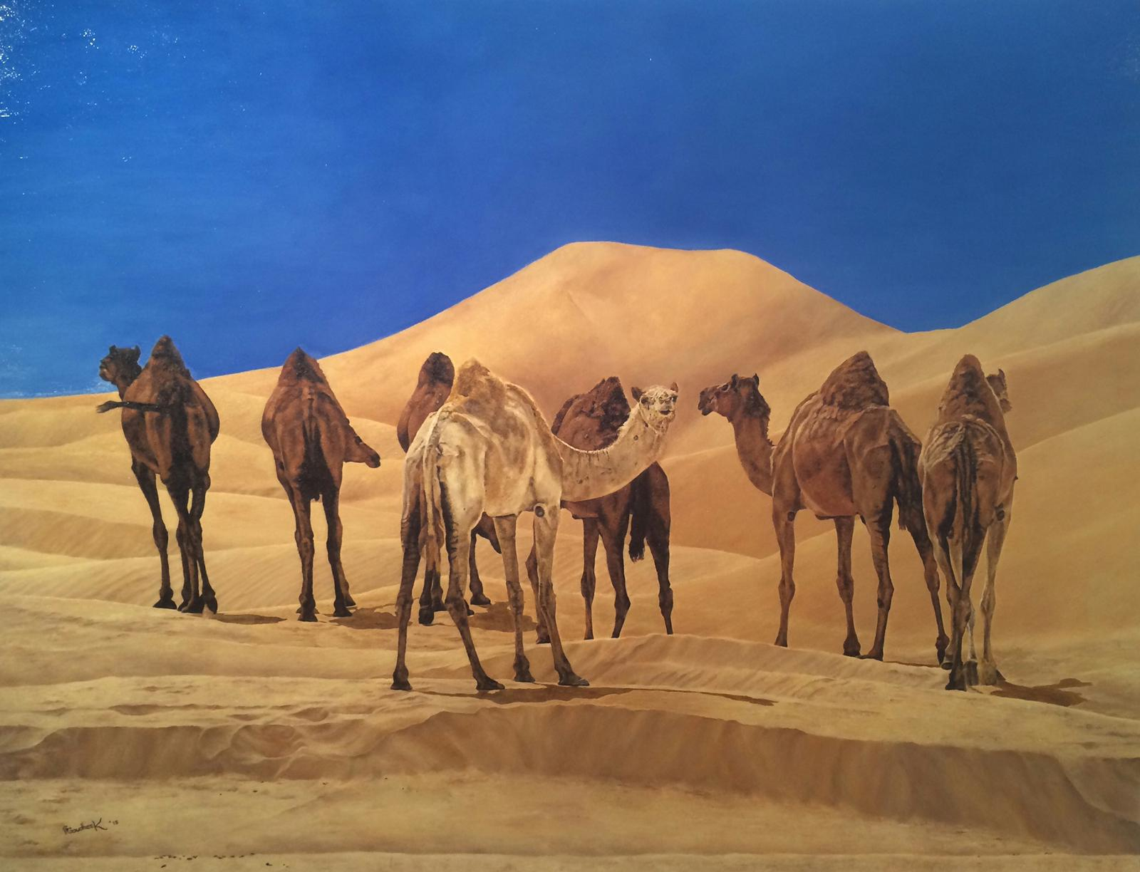 'Ships of the Desert'