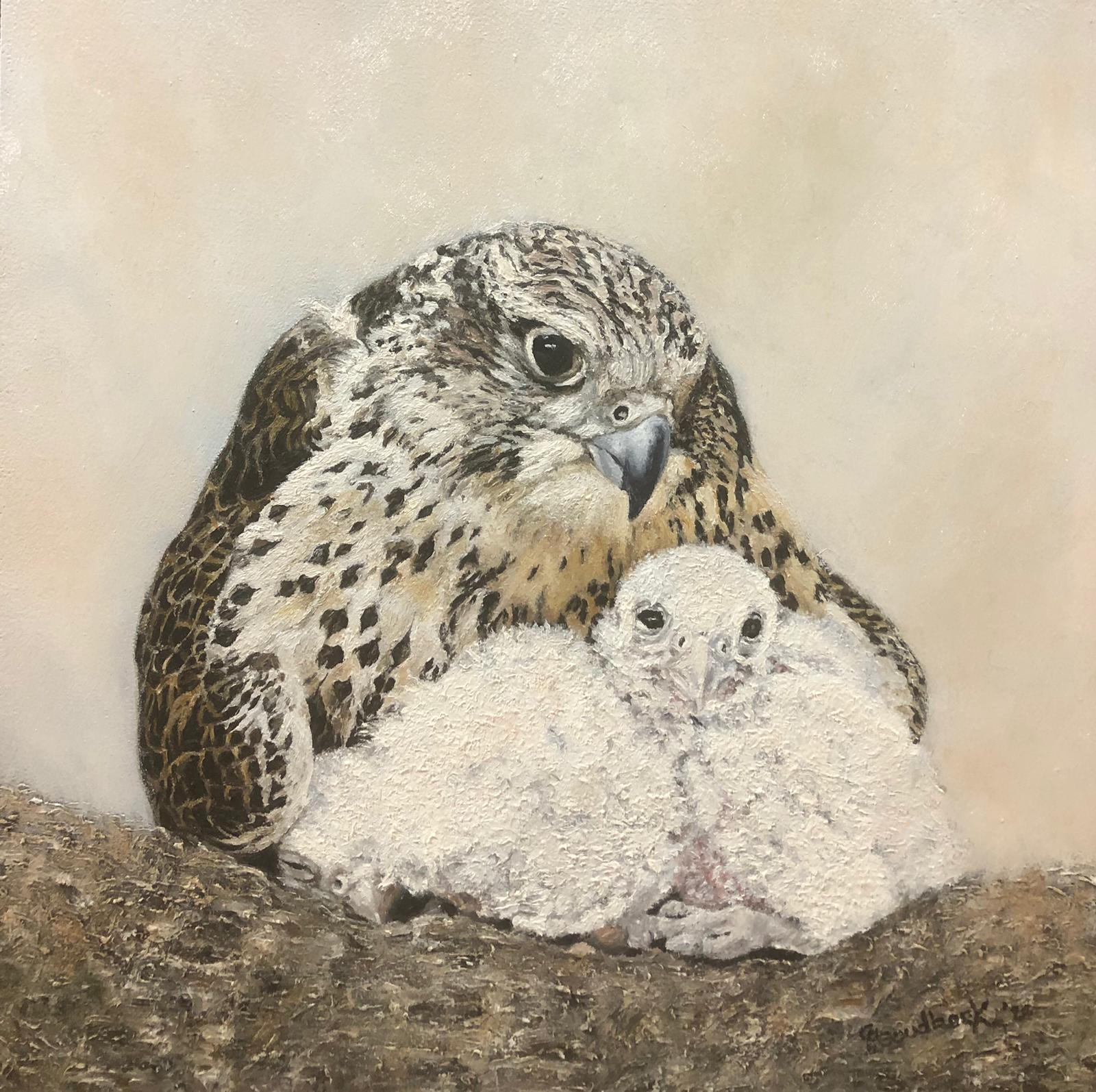 'Saker Falcon Malawi with her two chicks'